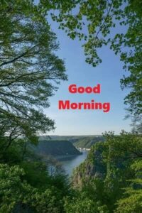 good morning nature image